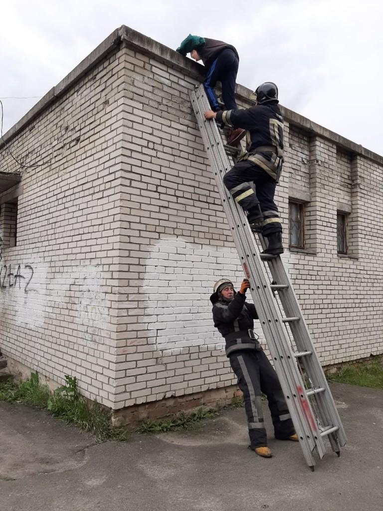 У Білій Церкві з даху будівлі зняли дитину рятувальники, фото-2