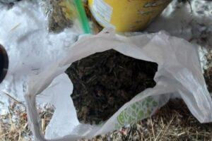 наркотики на білоцерківщині