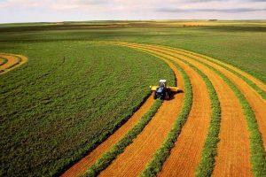 ринок землі україна
