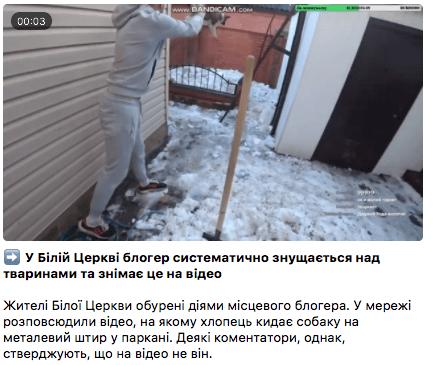 В жорстокому поводженні з тваринами помилково звинуватили білоцерківського блогера, фото-4