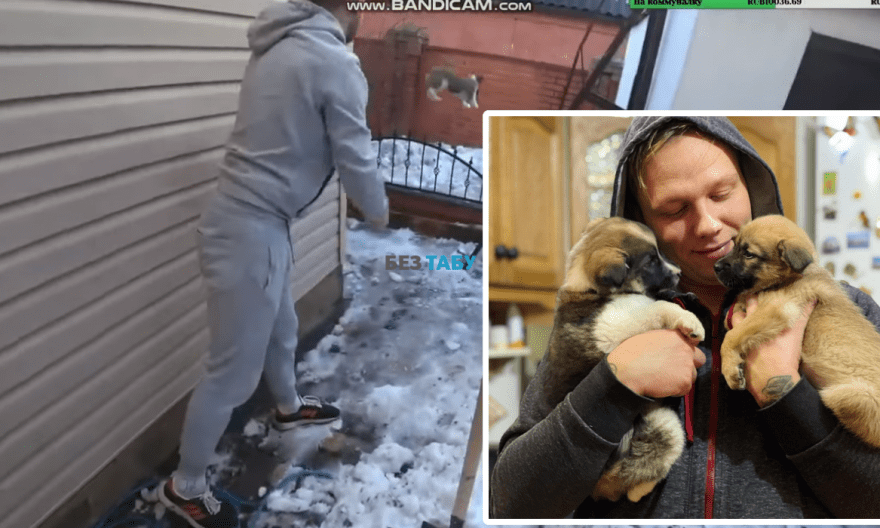 білоцерківський блогер Geksagen собака
