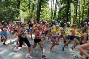 крос біла церква, крос в парку олександрія, чемпіонат київської області в білій цекрві