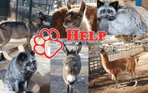 Зоопарк Олександрія