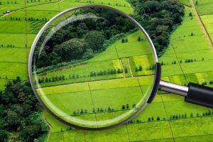 біла церква пілотний проєкт,доступ до даних у земельній сфері, доступ до земельних даних